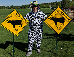Event_Cattle Crossing